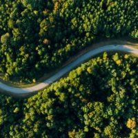 California ENA – In the Beginning, We Were Roadrunners